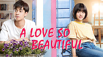 A Love So Beautiful (2017) on Netflix in India