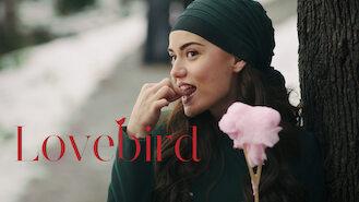 Is Love Bird, Season 1 (2013) on Netflix Canada? | WhatsNewOnNetflix com